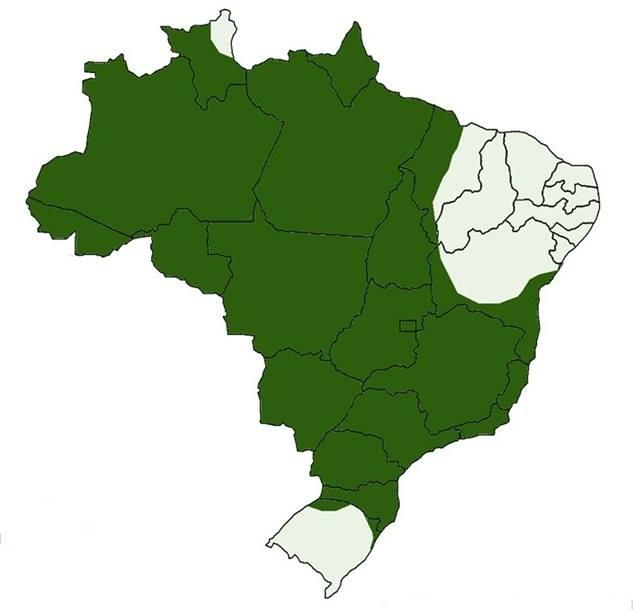 Brasil - Área de ocorrência do Gavião Real - Harpia harpyja - Hachurado verde.